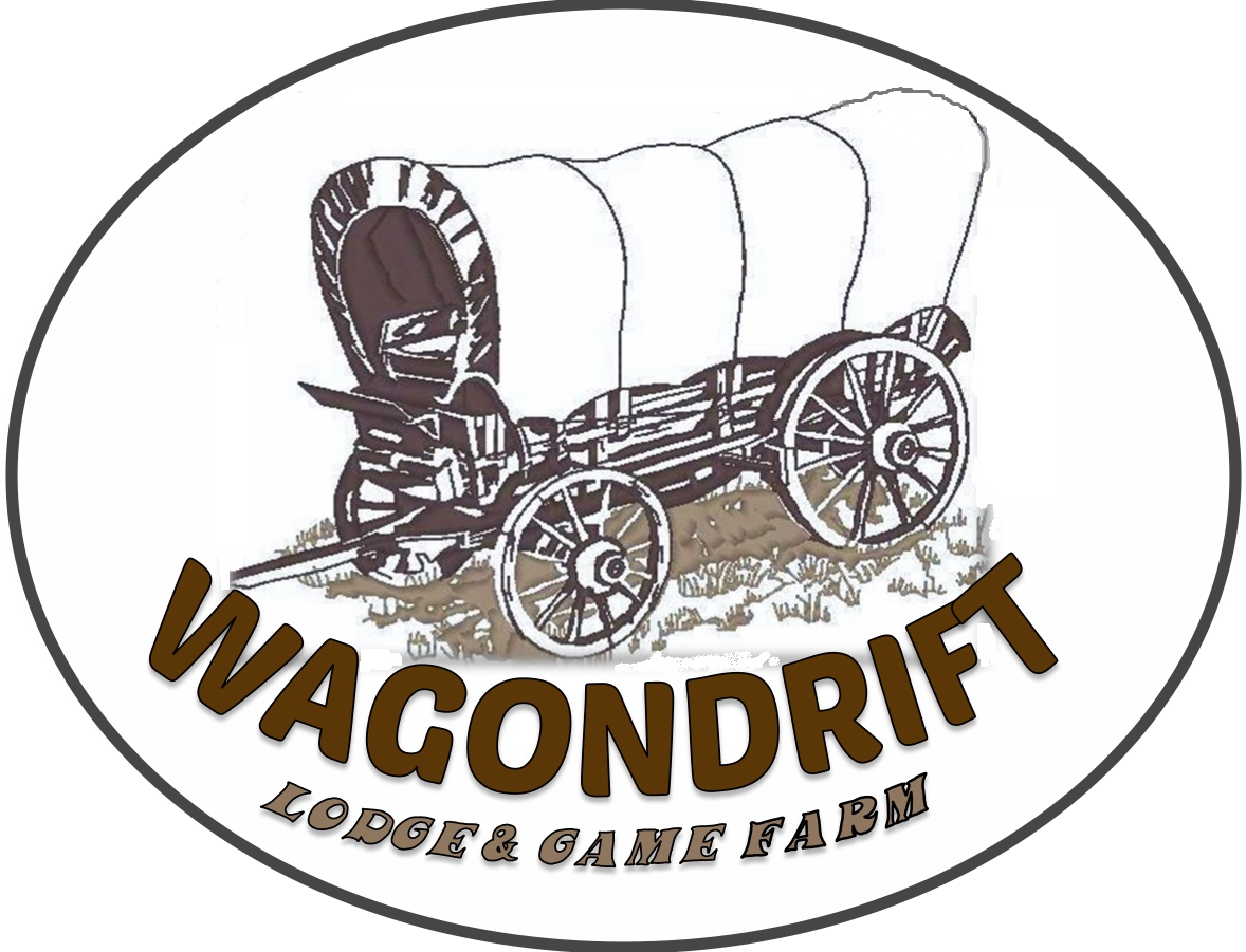 WagonDrift Lodge